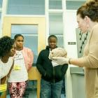 Students viewing a human brain specimen