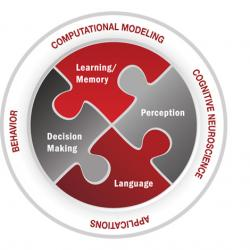 The Center for Cognitive and Brain Sciences areas of research: Learning/Memory, Perception, Language, Decision Making